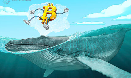 نهنگ های بیت کوین، پیش قدم در خرید این ارز!!!