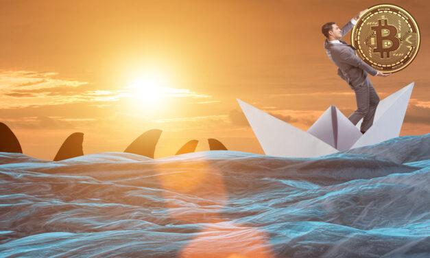 آیا برای سوار شدن بر کشتی سرمایه گذاری بیت کوین دیر شده است؟